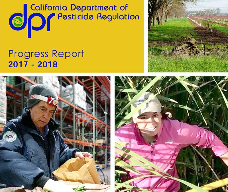 DPR Progress Report 2017-18