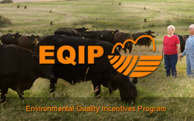 Farmers and Ranchers Encouraged to Submit Applications for Federal Conservation Assistance