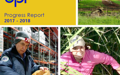 DPR Progress Report 2017-18