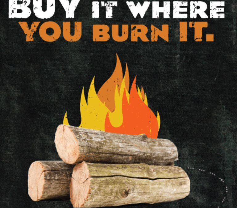 CDFA joins in Firewood Awareness Month