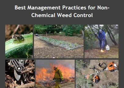 Best Management Practices for Non-Chemical Weed Control Manual and Online Decision Support Tool are Available!
